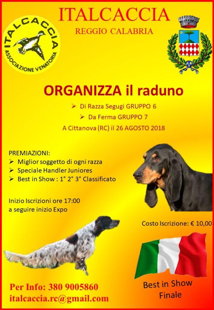 ITALCACCIA locandina